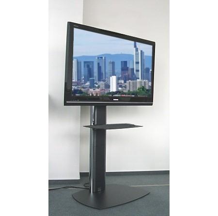 Videokonferenz Standfuss